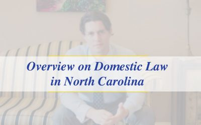 Domestic Law Overview (Video_
